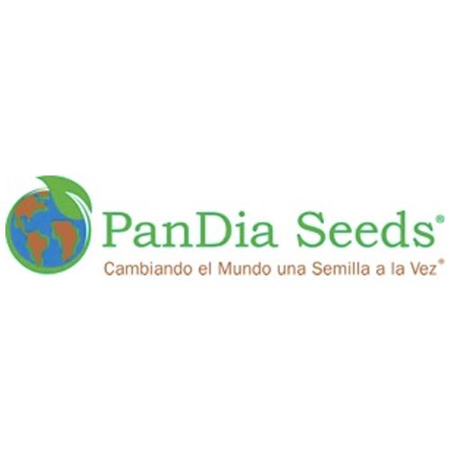Pandia Seeds